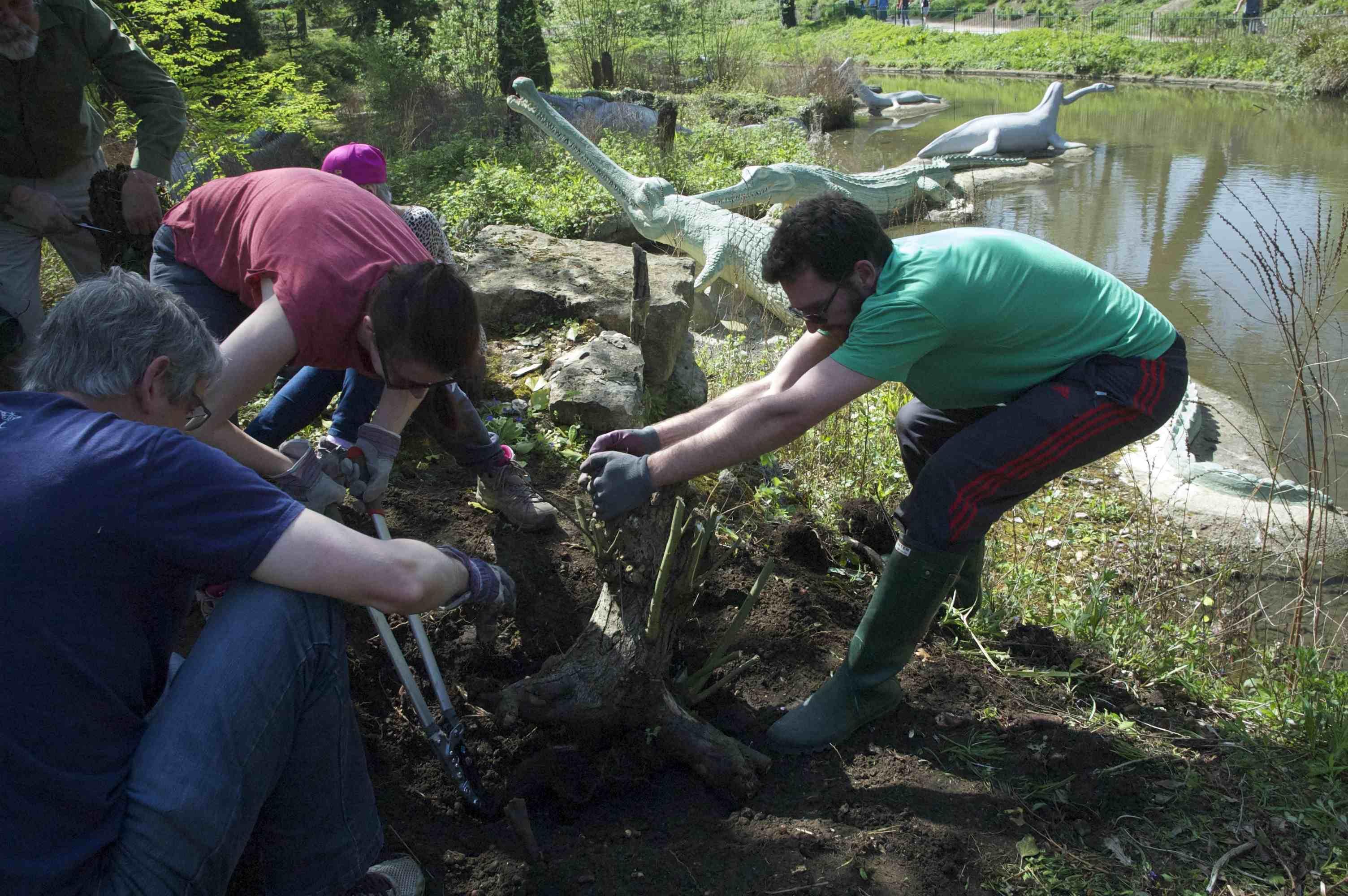 Paleo Planting volunteers 2