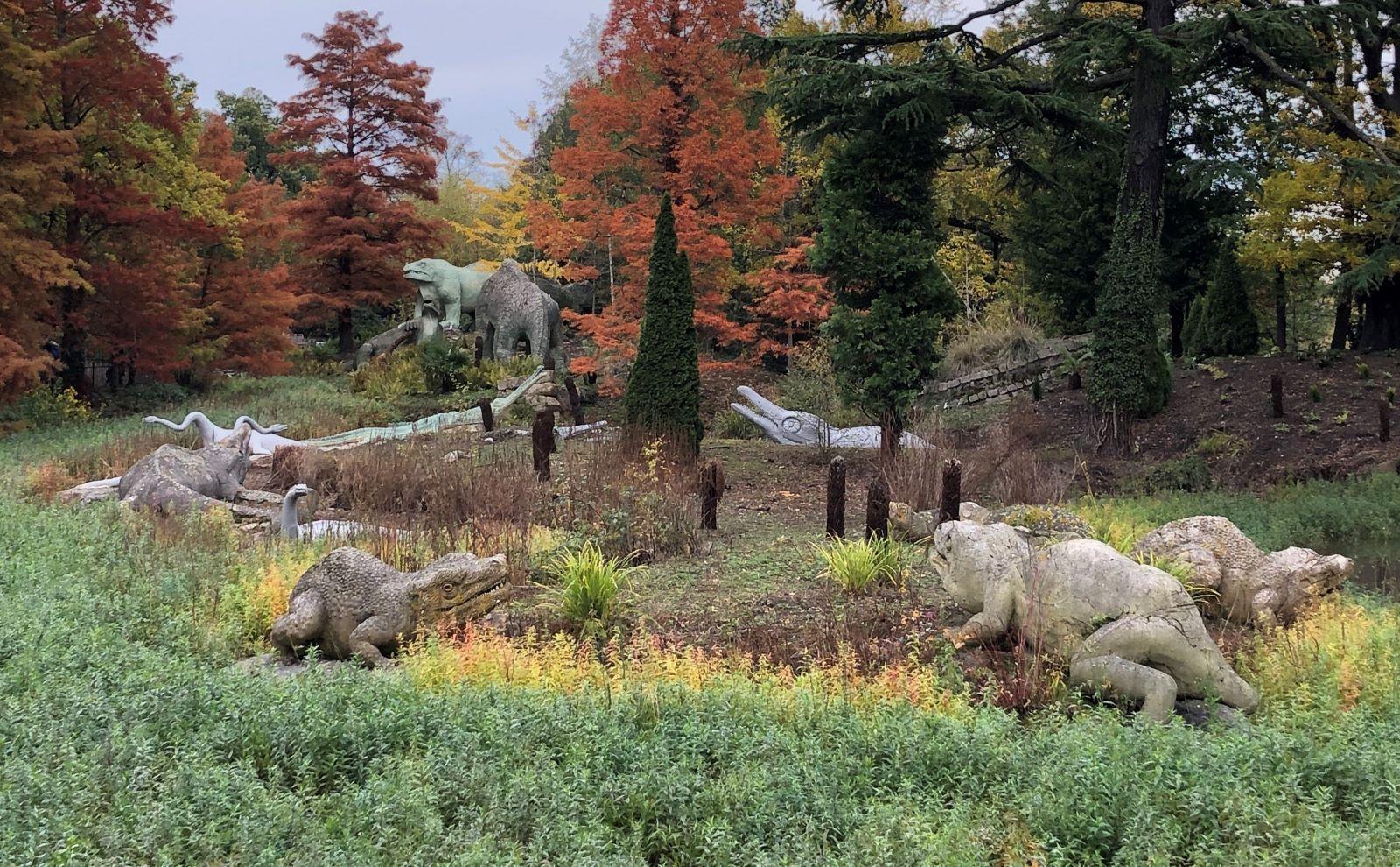 Dino view
