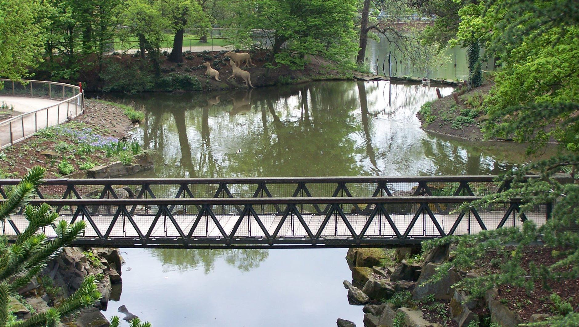 Pubic footbridge