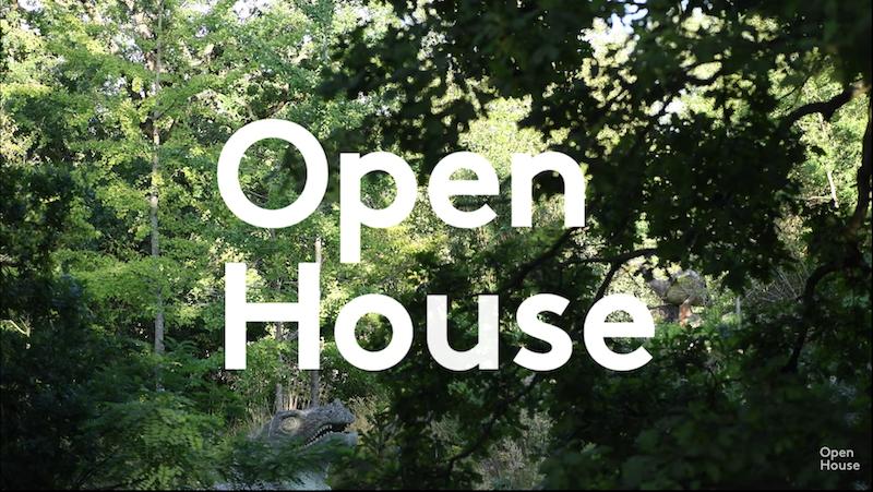 Open House 2020 CP Dinos