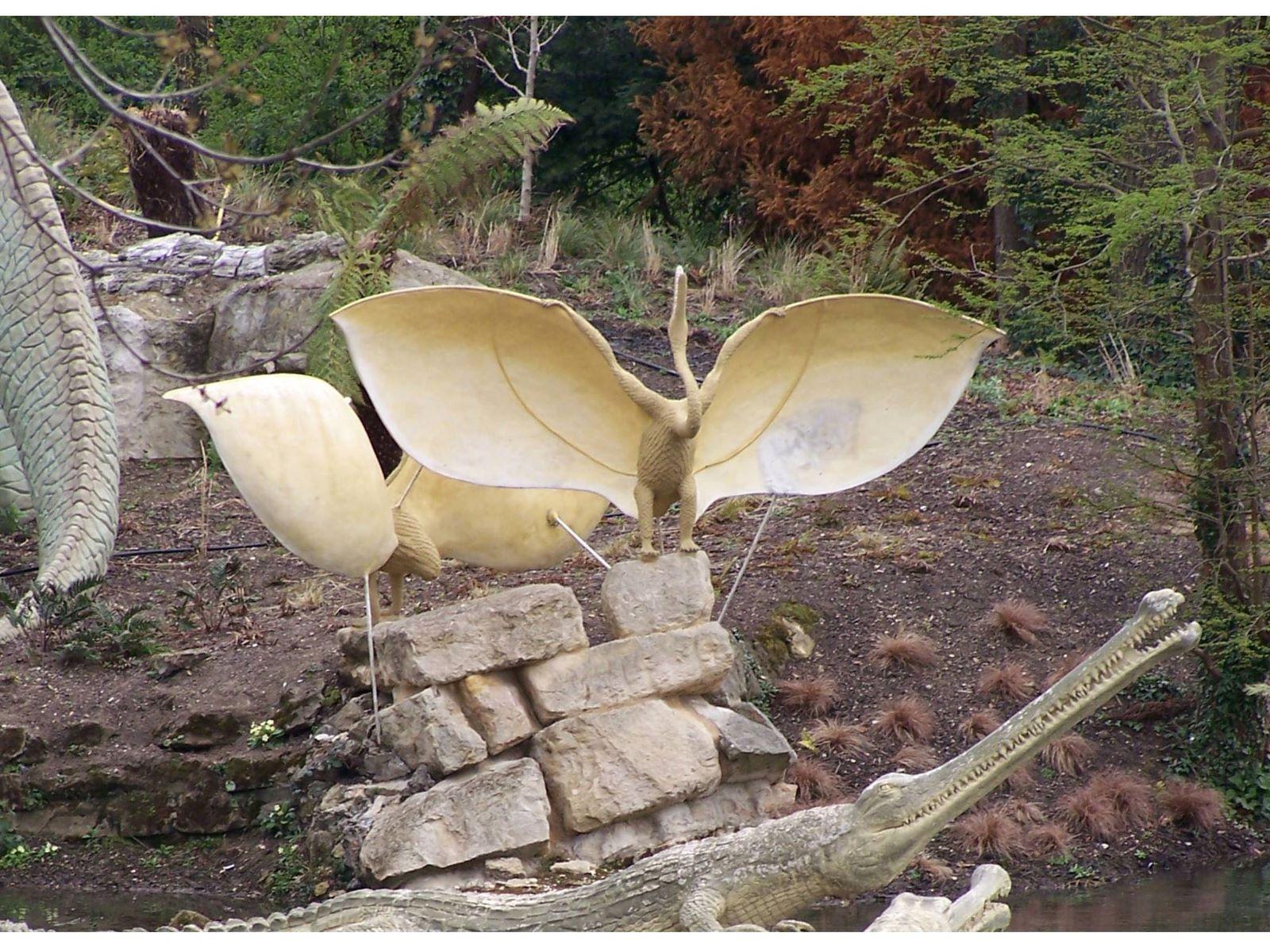 Pterosaur_Oolite_1
