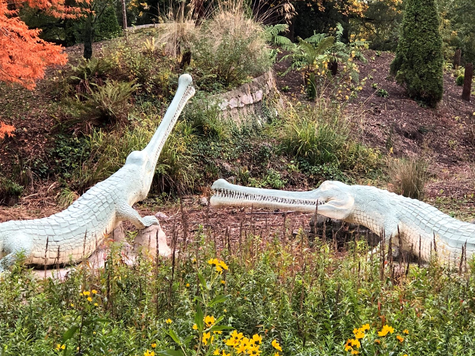 Teleosaurus_1