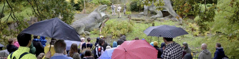 The Dinosaur Doctors perform